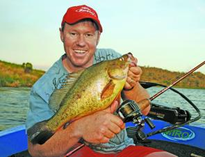Golden perch will still be taking lures this month until water temperatures begin to fall low towards the end of winter.