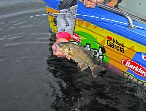 Smaller bass have been common at many of the lakes. Winter should see some bigger models come out to play.