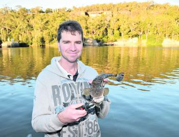 The author with a dusky flathead at perfect eating size from the upper Shoalhaven River caught on a Squidgy Prawn