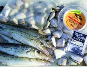 Circle hooks are a great alternative to using long-shanked hooks for King George whiting.