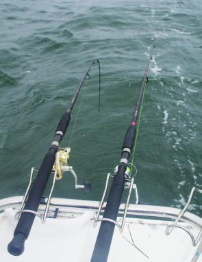 When using circle hooks, rods should be left in their holder: the fish isn't coming off.