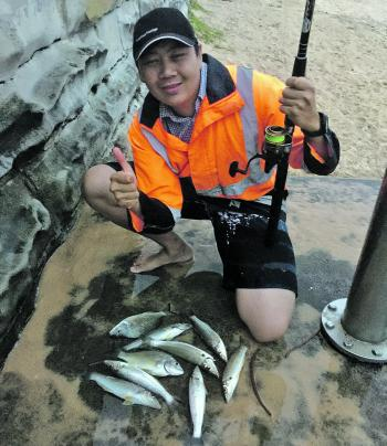 Lucas Tran caught his first beachworm and this great bag of bream and whiting off the very crowded Manly Beach.