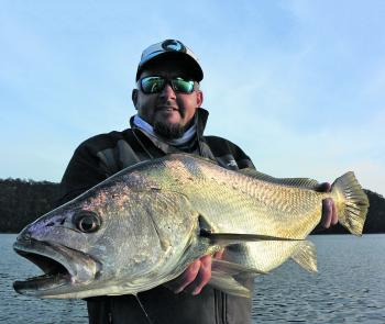 Some good mulloway can be caught in the lower reaches this month using live baits and lures. Fish structure an hour either side of the tide change.