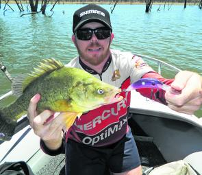 Working structure will increase your chances on golden perch. This one took a Balista Dyno 75.