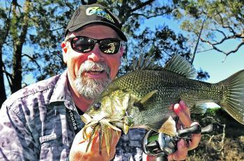 The author with a typical river-dwelling wild bass, taken on one of the most reliable lures available for catching this species – a spinnerbait.