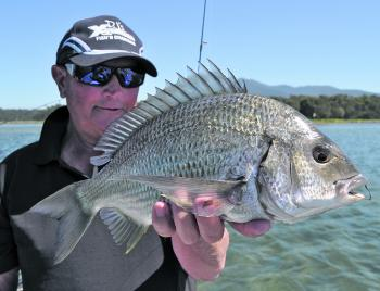 One of several bream taken over sand flats in Wallaga Lake. These fish were located by standing on the bow of the boat taking advantage of the height offered.