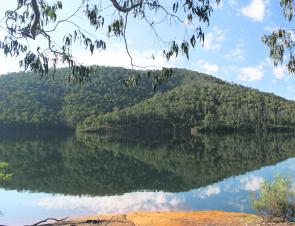 Beautiful and tranquil, Lake William Hovell is a fantastic small lake to take the family for a day out fishing.