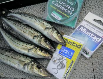 Whiting have small mouths, so small circle hooks are ideal when they are feeding aggressively.