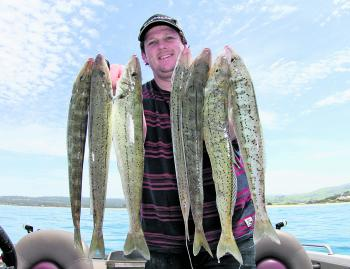 November is always a reliable month for good King George whiting captures around Apollo Bay.
