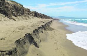 The Seven Mile beach stretches from Greenwell Point to Gerroa in the north and at times it can be exposed to the elements. This hasn't stopped it from being a great beach to fish from.