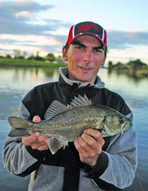 Bass are effectively off limits from until the end of August. Those caught should be released immediately.