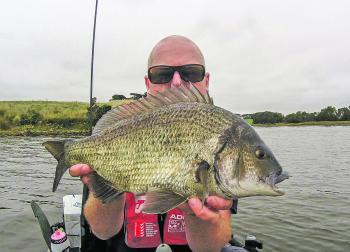 Bream are prevalent in the Hopkins and the main target for most anglers fishing the river.