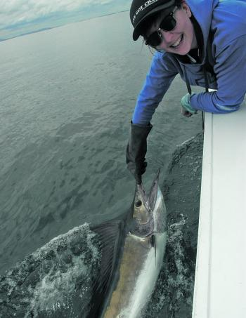 Marlin are on anglers' minds this month, and by January there should be plenty of beakies around for game fishers.