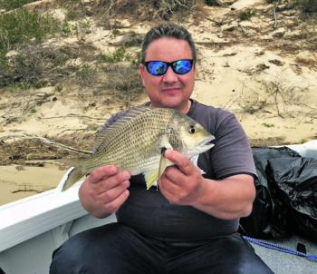 Bream, luderick, tailor and flathead are around the river in great numbers, heating up this month.
