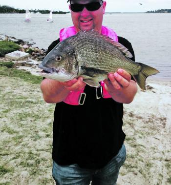 Steve Hume has a knack of finding the largest bream around the Paynesville area and the shallows are where the big fish are feeding right now.