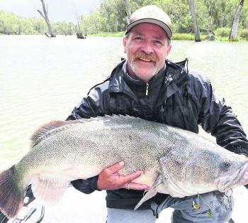 Paul Healey's 116cm monster caught during the Mulwala Classic.