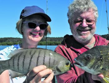 Blackfish and bream can be caught side by side over the flats on nippers and worms.