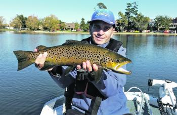 The author nailed this lovely Wendouree brown casting a Spawning Rainbow Bullet.