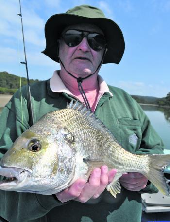 Solid bream are a favourite summer species.