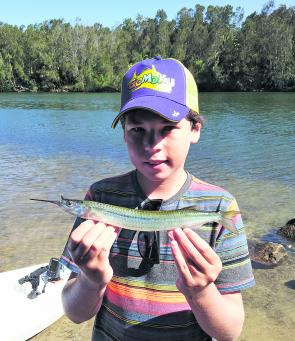 Antonio Revere with a big Narrabeen Lake garfish.