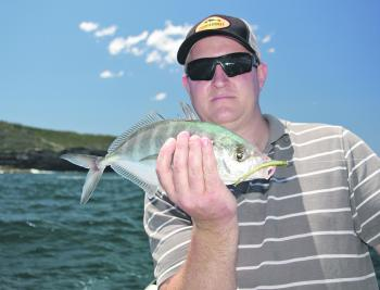 Trevally can be caught by letting your lure fall through the surface feeding schools.