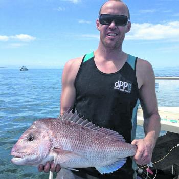 Snapper guru Matt Witherden with a typical Port Phillip Bay red caught off Carrum on a pilchard.