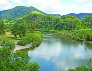 The Upper Macleay River is very picturesque and has some fantastic fishing.