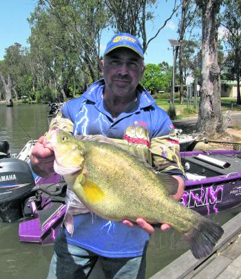 Mark 'Macca' McDonald with the biggest yella from the recent Golden Do$$ars comp, stretching the tape out to 539mm.