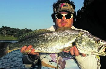 Luke Smith with a Hopkins River mulloway taken recently.