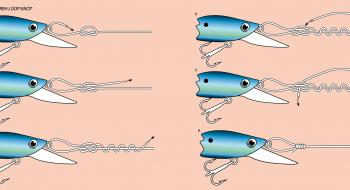 Steps to tie a Lefty Kreh Loop Knot.