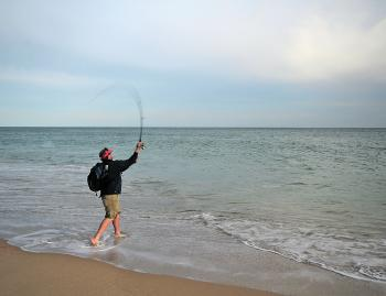 Surf casting in calm weather can be difficult to locate fish but finding the gutters is where you'll find the fish.