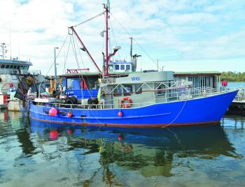 The commercial fishing industry is a big part of Lakes Entrance and a large fleet of trawlers operates from there.