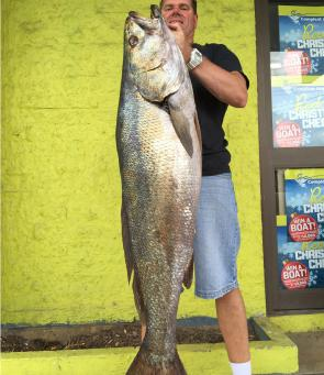 Josh Baddock's mulloway took the crown in 2014!