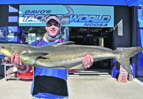 Tim French's North Reef 15.2kg cobia won him this week's $50 Davo's Fish of the Week prize.