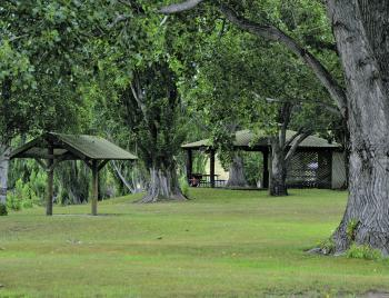 There are BBQ's and shade shelters along the river beside the hatchery for the public to enjoy the area.