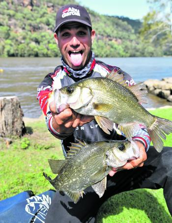 Ross Cannizzaro dominated on the Hawkesbury, targeting estuary perch rather than bass to claim the win.
