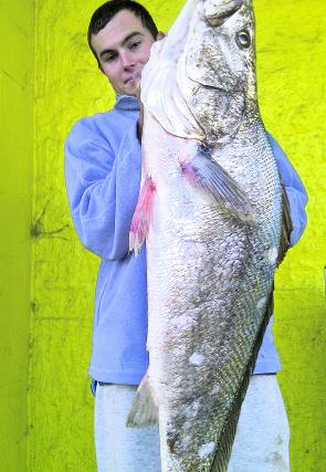Coen Davis with a very healthy mulloway.