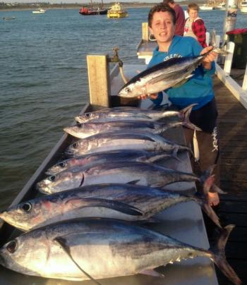 A nice bag of albacore for this happy young angler, which were all caught aboard Matthew Hunt Fishing Charters.
