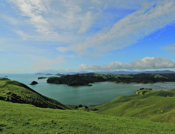 The Coromandel Peninsula is kingy heaven for those fishing land-based or from a boat.