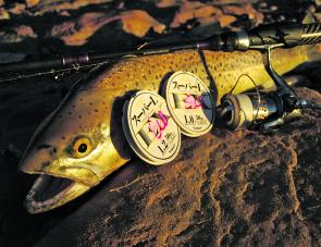 Bottom contact, lure and leader selection are all things you need to take into consideration when targeting brown trout in Thompsons Creek Dam.