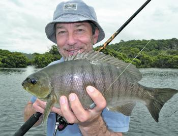 Luderick provide good fun while cool-weather angling.