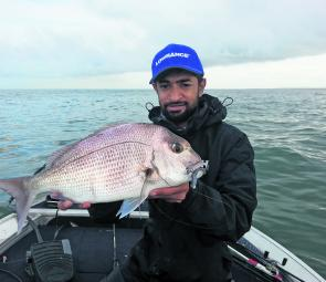 Snapper like this 50cm model have been a common catch in the shallows.