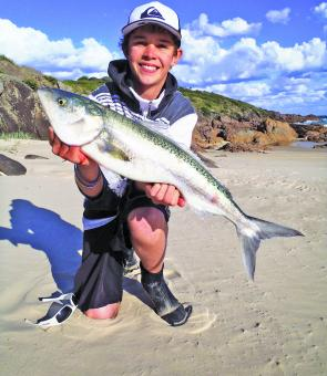 Salmon are every where on the beaches and can't resist metal slugs. Cohen Marante with a classic specimen.
