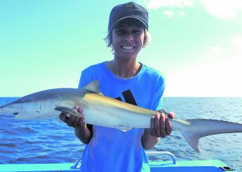 Kobi Lee-Leong with a sweet little whaler caught on a close reef off Tweed.