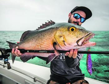 With an RRP of $149.95 the 13 Fishing Defy swimbait is outstanding value for money.
