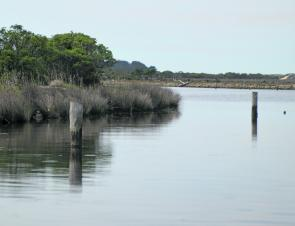 There are plenty of structure both artificial and natural for the fish in the Snowy River system.