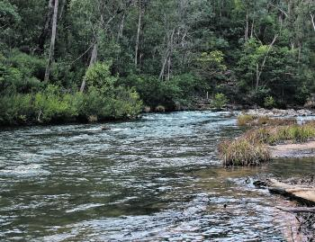 The river and creeks are off limits to trout fishing during the winter months and are set to re-open on the first Saturday in September.