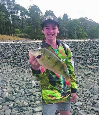 Cooper New landed this magnificent 39cm redfin from Cosgrove Reservoir only 10 minutes from Ballarat casting a 5cm Tiger Bullet Lure. Photo courtesy of Cooper New.