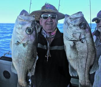 Regular fisho Geoff 'Peg' with two beautiful Rainbow Beach pearl perch.