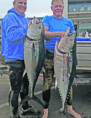 Jamie Ross and Doug Smith with some great SBT speared out of Portland recently.